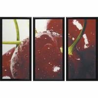 Модульная картина Династия 06-034-03 Спелая вишня