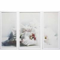 Модульная картина Династия 06-002-01 Белая орхидея