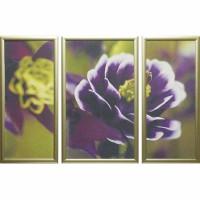 Модульная картина Династия 06-004-01 Фиолетовые цветы