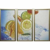 Модульная картина Династия 06-036-03 Лимоны